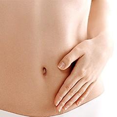 L'intestin et son Microbiote